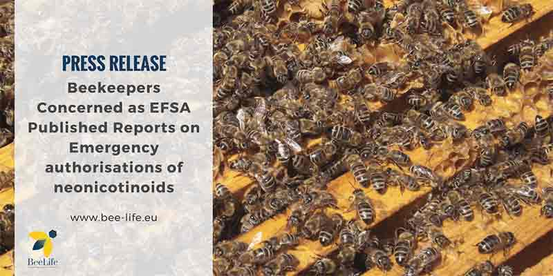 beekeepers concerned efsa reports