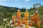 Produits de la ruche et dérivés