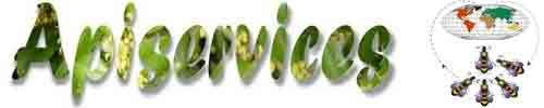 Apiculture - Apiservices