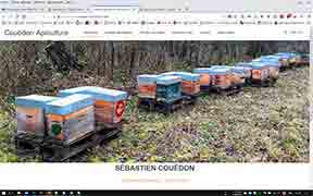 couedon apiculture