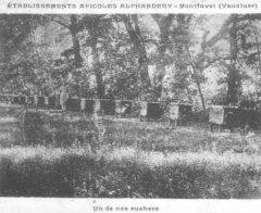 84-28.jpg