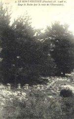 84-36.jpg