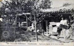 apiculteur003.jpg