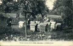 apiculteur004.jpg
