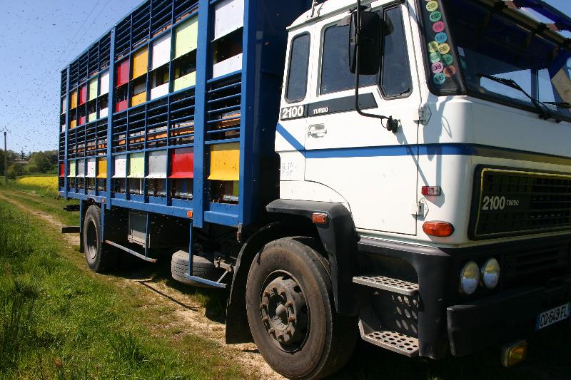 camionruches007.JPG